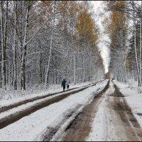 По первому снегу :: Николай Белавин