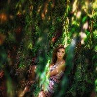 Краски лета... :: Vitaly Shokhan