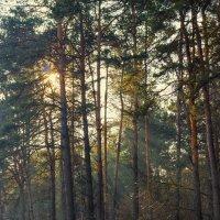 пейзаж :: Tatsiana Latushko