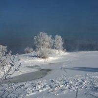 Морозный день :: Дамир Белоколенко