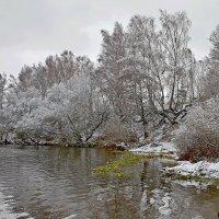 Первый  снег. :: Валера39 Василевский.