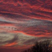 Осеннее небо :: Алена