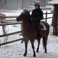 конный :: sv.kaschuk