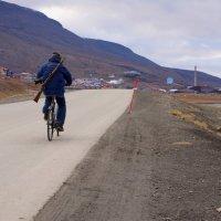 Фото, вело и просто охотник :: Александр Павленко