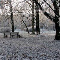 Уже не осень, но и не зима.... :: ТАТЬЯНА (tatik)
