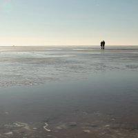 """""""Гулять по воде"""" :: Андрей Lyz"""
