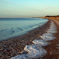Северодвинск. Какие волны, такой и рисунок на берегу :: Владимир Шибинский