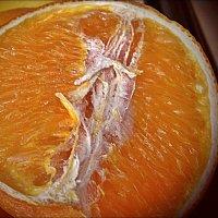 Апельсин в разрезе :: Нина Корешкова