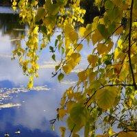 осень...... :: Михаил Корнев