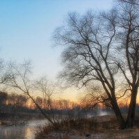 Прогулка у реки :: Иван Анисимов