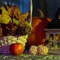 Осень :: Ольга Бекетова