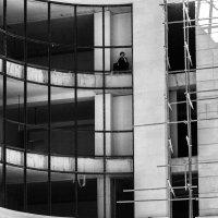 В клетке... :: Anna Grigoryan
