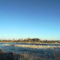 река Луга, ноябрь :: Михаил Жуковский
