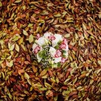 В вихре осени :: Мария Буданова