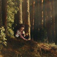 Утренний лес :: Татьяна Пименова