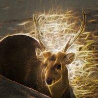 Волшебные рога :: Александр Деревяшкин