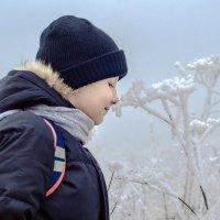Запах зимы :: Анна Никонорова