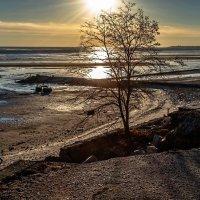 Центральный пляж перед закатом :: Константин Бобинский
