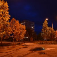 Золотые ночи :: Ольга