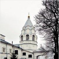 Никитский монастырь (7). :: Владимир Валов