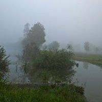 в тумане :: Елена