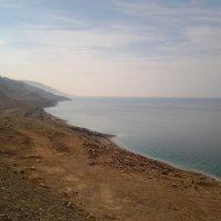 Утро на Мертвом море. :: Жанна Викторовна