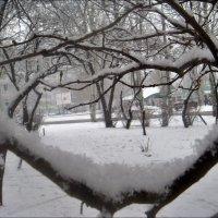 Снежные видения :: Нина Корешкова