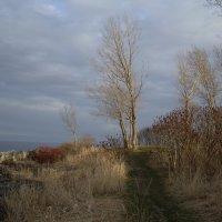 На острове близ Торонто...(3) :: Юрий Поляков