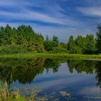 Пейзаж :: Светлана Григорьева