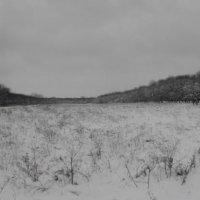Снег в ноябре :: Александр Korsun