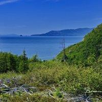 Побережье Охотского моря.  Колыма 19 :: Виталий Половинко