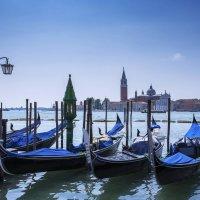 Венецианская классика:) :: Alllen Polunina