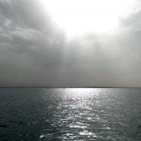 Закат в Красном море :: Елена Шемякина