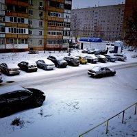 С первым днём зимы) :: Ксения -