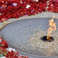 Вечный огонь :: Дмитрий Конев