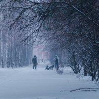 На прогулке :: Алексей Масалов