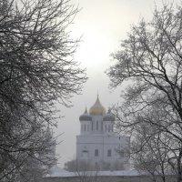 Псковский  Кремль :: Valentina Lujbimova [lotos 5]
