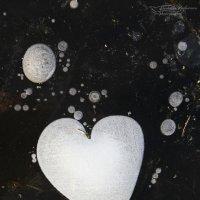 Ледяное сердце :: Людмила Бочарова