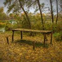 Поздняя осень :: Denis Aksenov