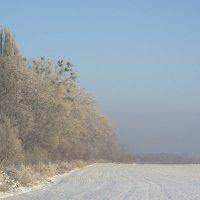 Зимове поле :: Дмитрий Гончаренко