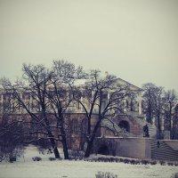 В зимнем парке..... :: Tatiana Markova