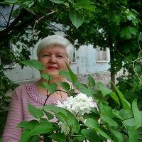 В белой сирени :: Нина Корешкова