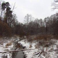 IMG_6484 - Начало сезона черно-белой фотографии :: Андрей Лукьянов