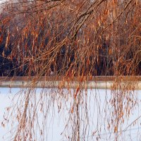 Зима и осень :: Наталья Лакомова