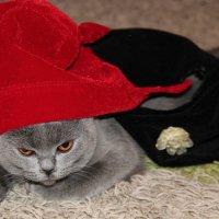 Красная шапочка :: Лариса Корж