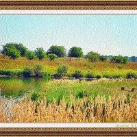 Знойное лето :: Лидия (naum.lidiya)