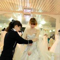 выбор....платья :: Лариса Тарасова