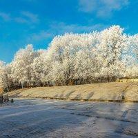 Последний день ноября :: Артем Скирмаков