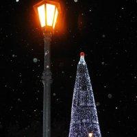 Новогодний снег :: Вера Андреева