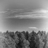 Озеро Селигер :: Sergey Lexin